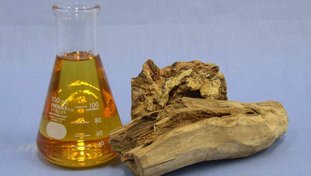 sandalwood oil for skin
