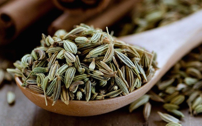 home remedies to reduce body heat - fennel seed