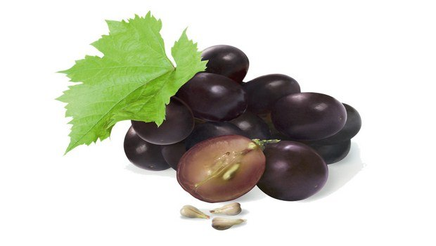 home remedies for Lupus-grape seed extract