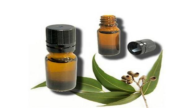 home remedies for MRSA-eucalyptus oil