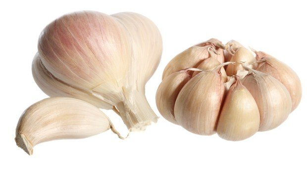 home remedies for appendicitis-garlic