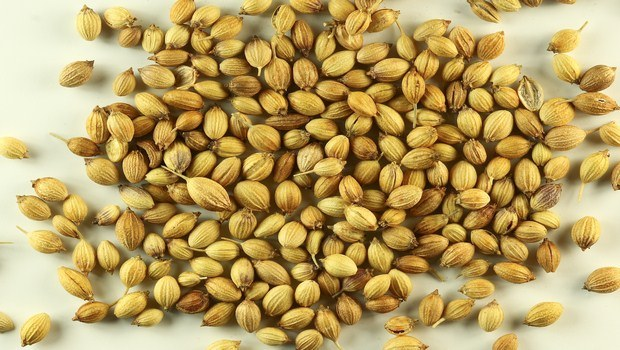 home remedies for gas pain-coriander seeds