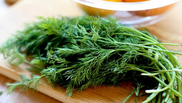 home remedies for obesity-fennel