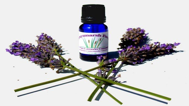 home remedies for red face-lavender oil