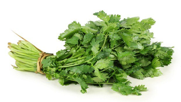 home remedies for tmj-cilantro