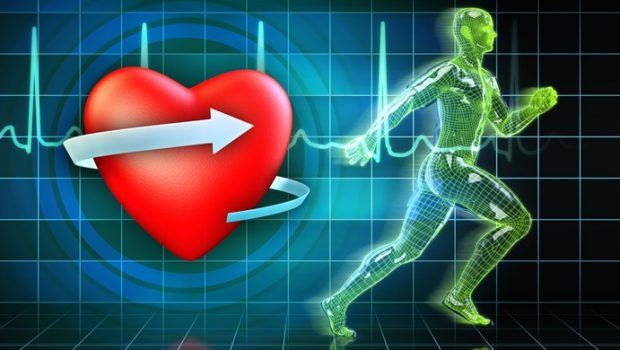 how to reduce triglyceride levels