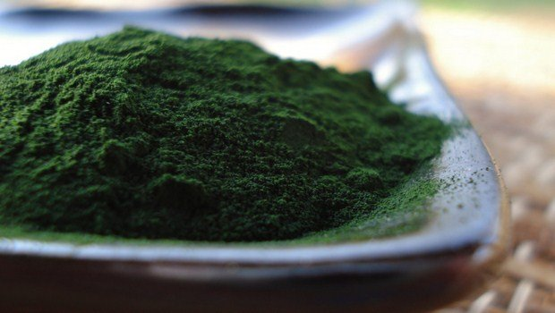 how to treat meningitis-chlorella supplement ss the home remedy