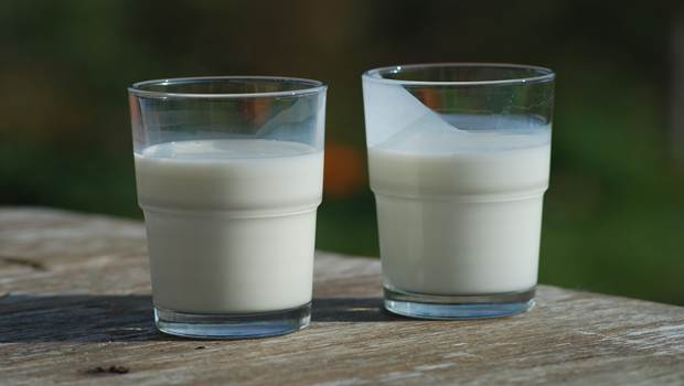 raw milk facts