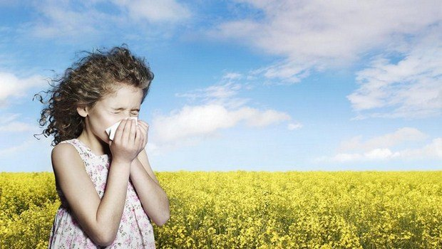 top 11 home remedies for sneezing you should follow