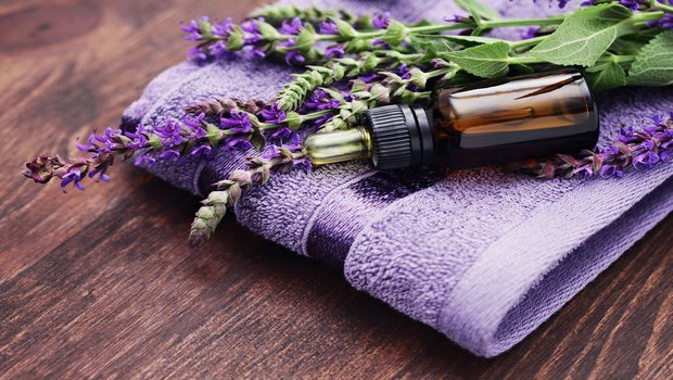 how to treat bee stings-lavender essential oil