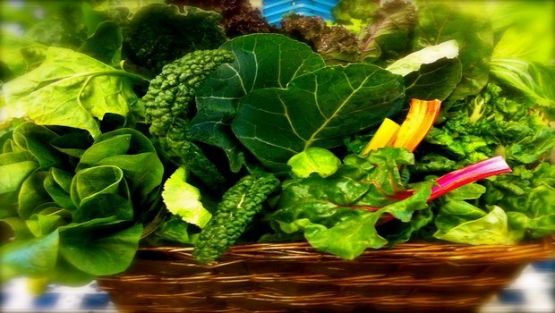 foods for vegetarian-dark leafy green vegetables
