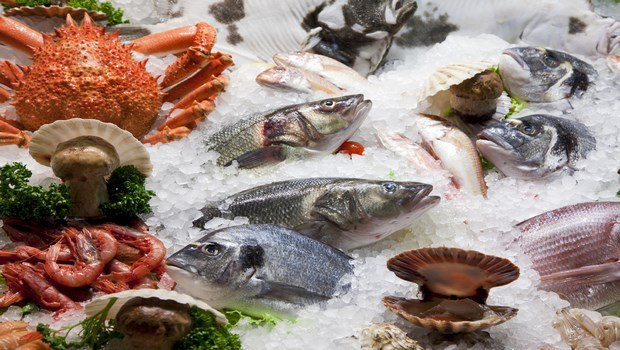 healthy foods for teens-fish and seafood