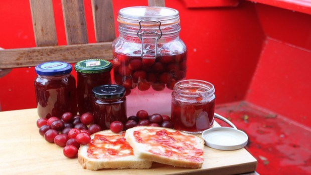 how to make jam-plum jam