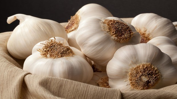 how to treat scabies-try home remedy garlic