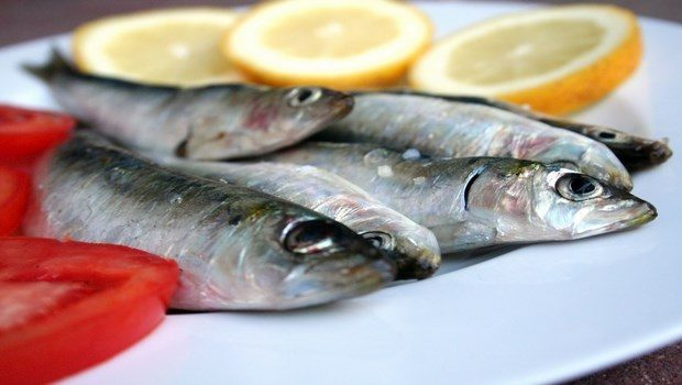 foods that fight cellulite-sardines