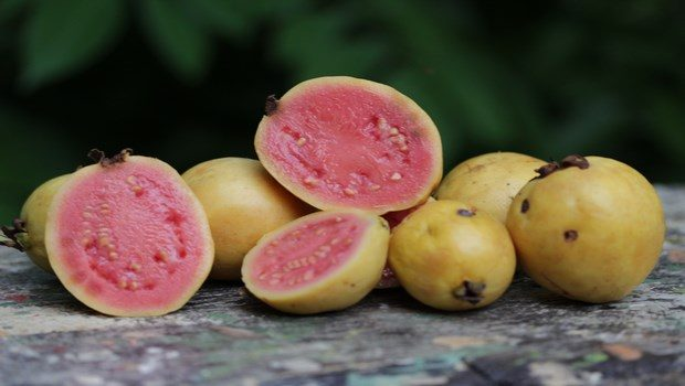 foods to reduce high blood pressure-guava
