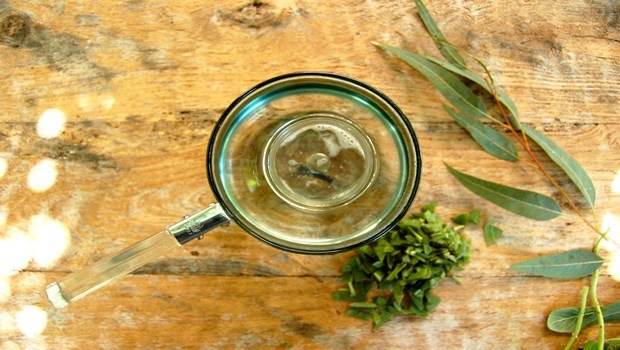 how to cure asthma-eucalyptus oil