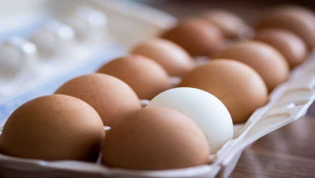 how to stop thinning hair-eggs