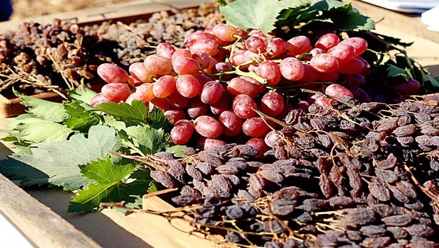 foods to increase blood platelets-raisins