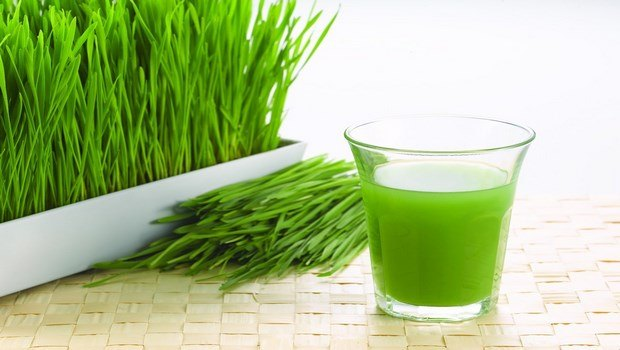 foods to increase blood platelets-wheatgrass
