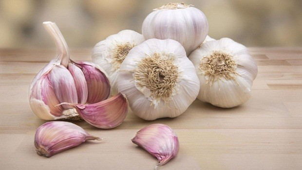how to treat kidney infection - garlic