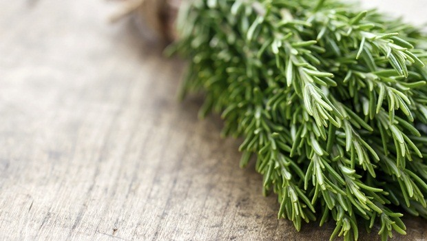 how to treat muscle cramps - rosemary