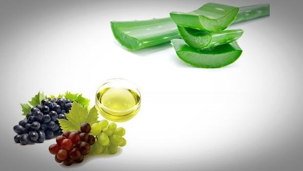 aloe vera and grape seed oil moisturizer