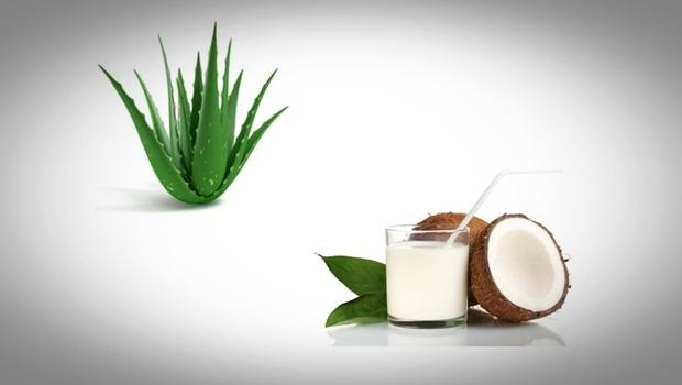 how to make hair thicker - aloe vera with coconut milk