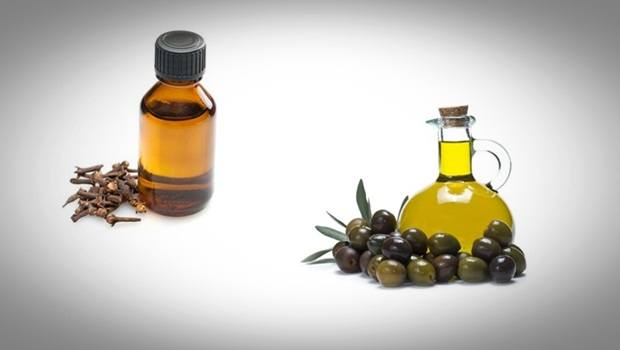 how to treat swollen gums - clove essential oil and olive oil