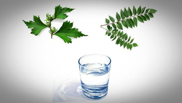 how to make hair thicker - hibiscus leaves, curry leaves, and water