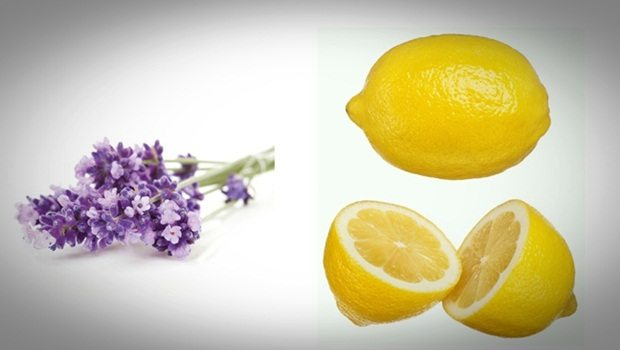 homemade facial moisturizer - lemon and lavender moisturizer