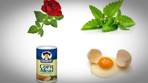 rose face mask - mint, cornmeal, egg white and rose face mask