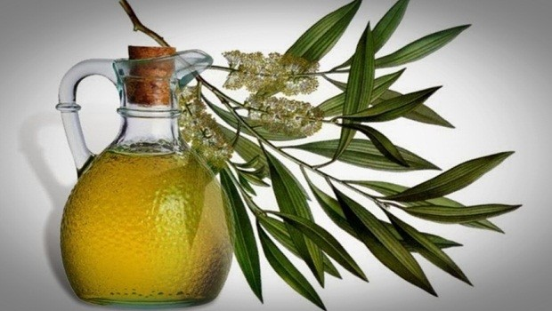 how to treat sebaceous cysts - tea tree oil