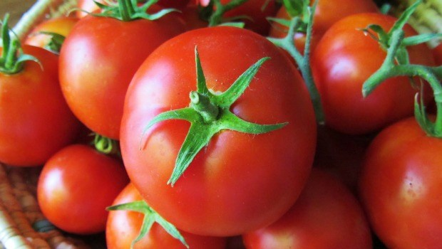 superfoods for skin - tomato