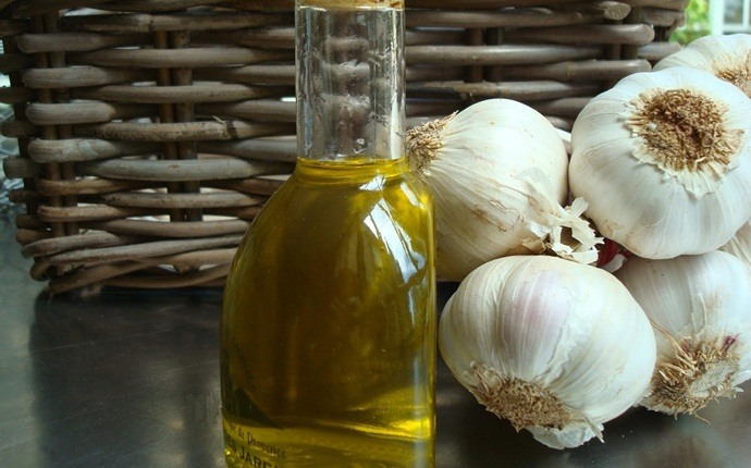 garlic for acne - garlic oil and salicylic acid