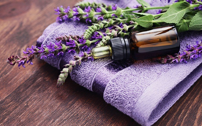 how to get rid of dry hair - gelatin, vinegar, lavender oil and water