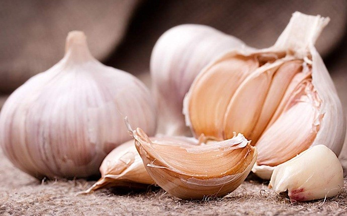garlic for acne - homemade garlic chemical peel