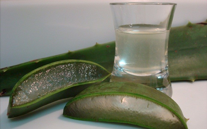 home remedies for sebaceous cyst - aloe vera