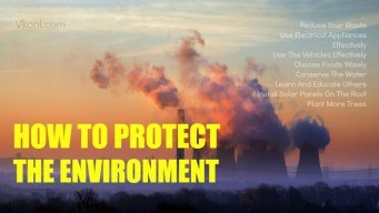 How to protect the environment