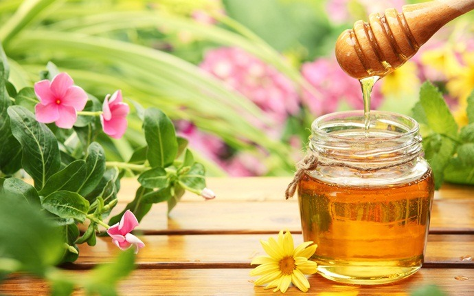 home remedies for whooping cough - honey