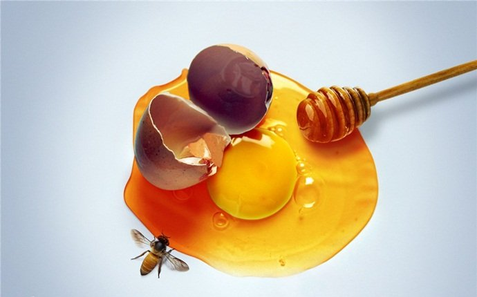 hair mask for oily hair - honey and egg yolk hair mask