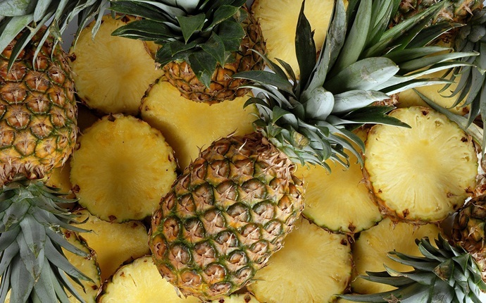 hair mask for oily hair - pineapple and banana hair mask for oily hair