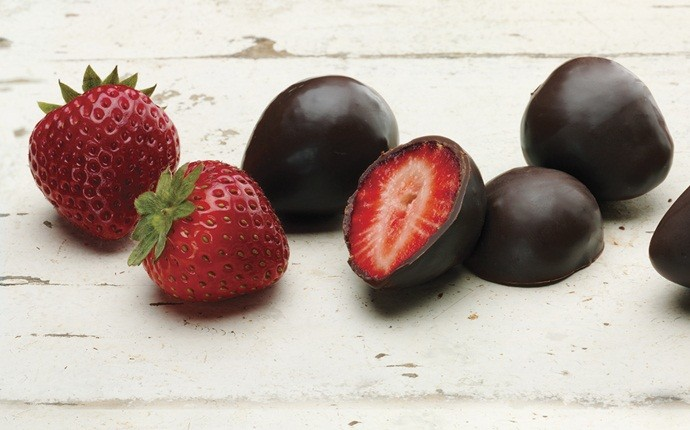fresh strawberry recipes - dark chocolate and strawberries