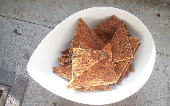 paleo snack recipes - no-ritos