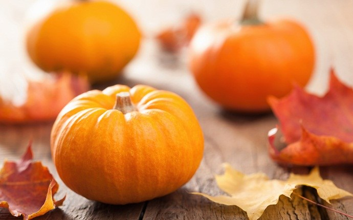 how to get rid of puffy hair - pumpkin and honey