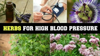 herbs for high blood pressure 1