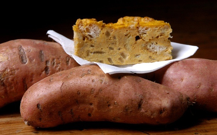 sweet potato recipes - sweet potato pudding