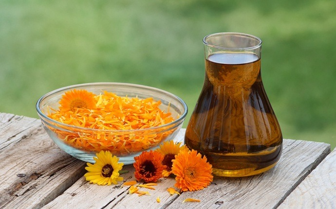 tea tree oil for nail fungus - tea tree oil with calendula extract