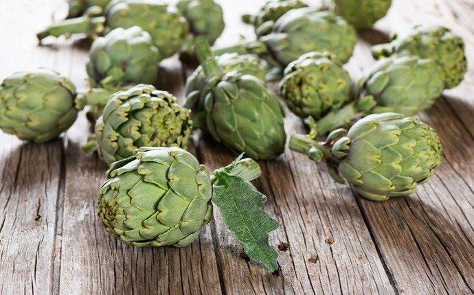 health benefits of artichoke – vitamins and nutrients contained in artichoke