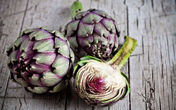 benefits of artichoke - list of the best nutrition benefits of artichoke – the overview